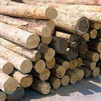 Obavijest za gospodarske subjekte koji se bave drvopreradom, metalopreradom i tekstilom/obućom/kožom